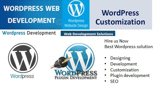 Wordpress Development Company in USA - WordPress Web Development Company Services USA - WordPress plugin Development best wordpress development company
